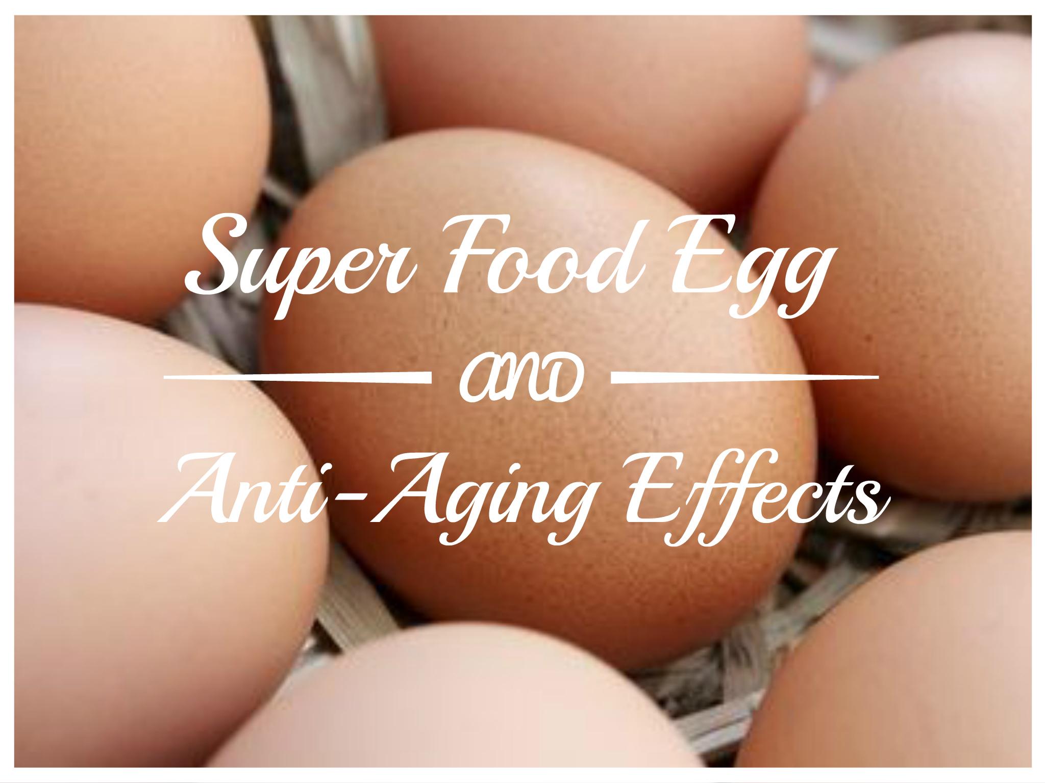 卵アンチエイジング効果