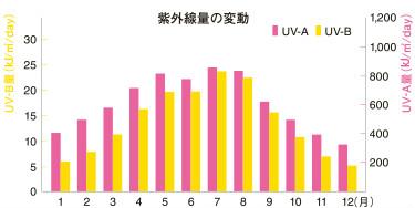 紫外線量年間