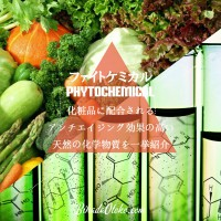 アンチエイジング効果の高い植物エキスと精油のファイトケミカル天然化学物質一覧
