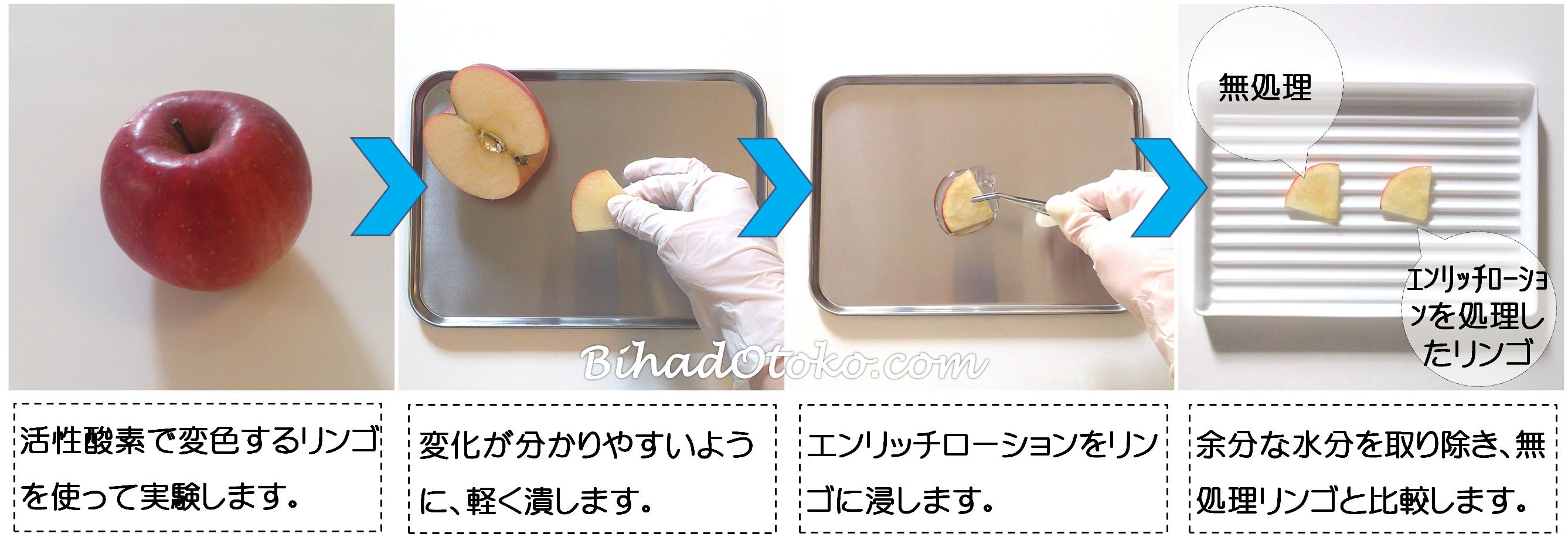 エンリッチローションのリンゴの実験手順