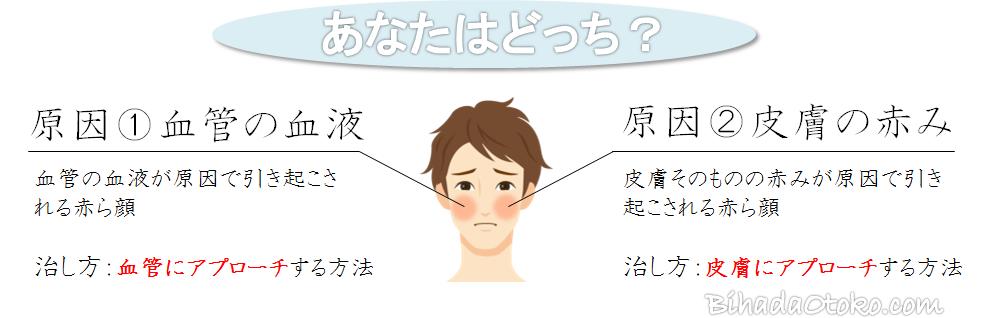 赤ら顔の原因と治し方!皮膚科がオススメする男も使える化粧品と漢方