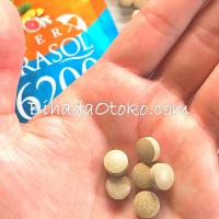 インナーパラソル16200飲む日焼け止めの口コミ・効果・副作用・最安値まとめ2