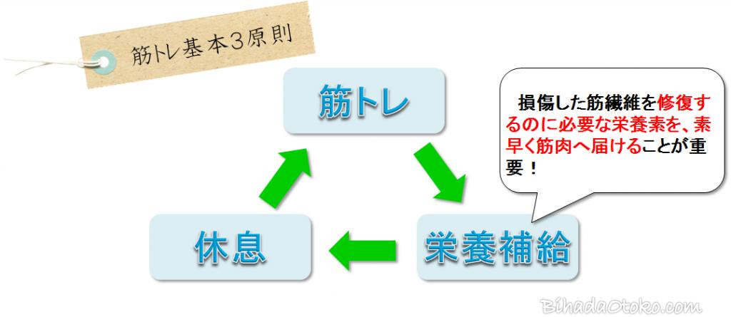 HMB配合の筋肉サプリ徹底比較5選【専門家監修の最新版】